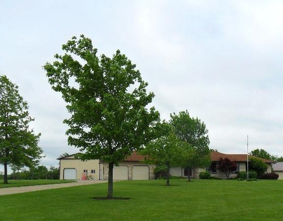 Real Estate for Sale, ListingId: 31041444, Moravia,IA52571