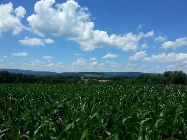 900 Belmont Rd, Gettysburg, PA 17325
