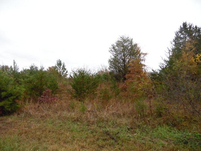 Mill Ridge Rd, Pelham, NC 27311