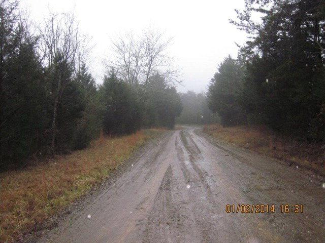 87 Alma Willis Rd, Yanceyville, NC 27379