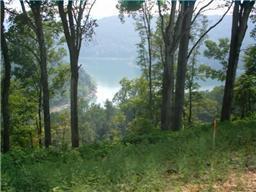 Real Estate for Sale, ListingId: 20284609, Smithville,TN37166