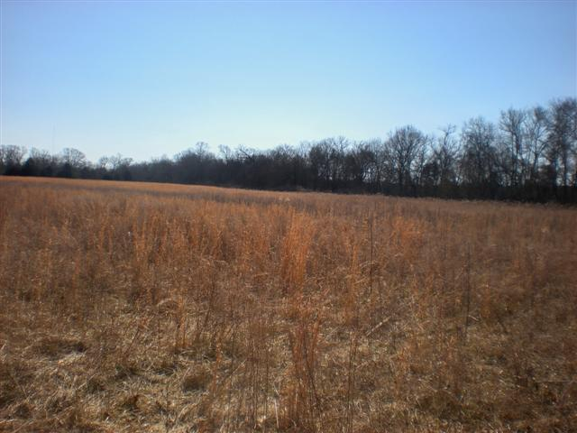 Image of Acreage for Sale near Mount Juliet, Tennessee, in Wilson county: 127.06 acres