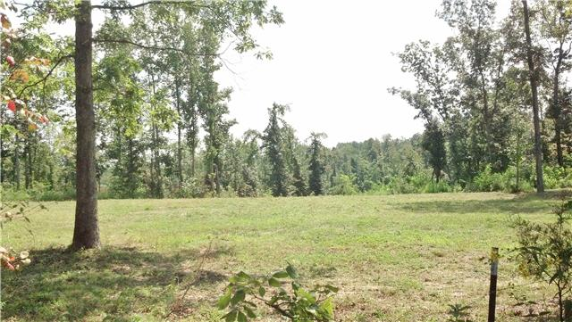 Image of Acreage for Sale near Pegram, Tennessee, in Cheatham county: 493.00 acres