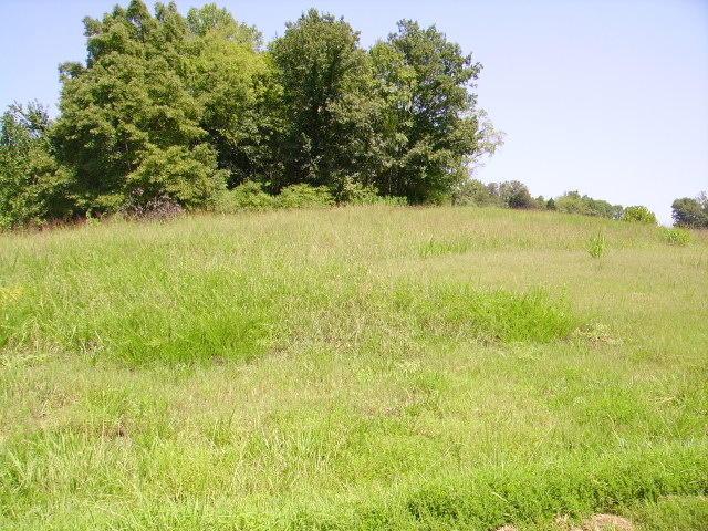 3 LOT #3 Rivercrest Lane Castalian Springs, TN 37031