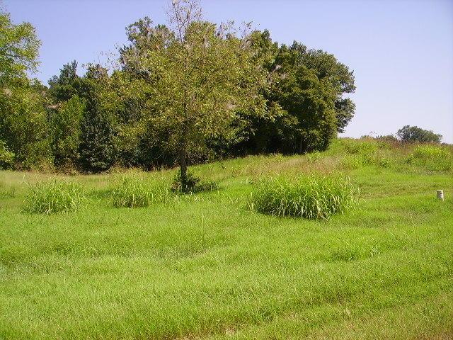 4 LOT #4 Rivercrest Lane Castalian Springs, TN 37031