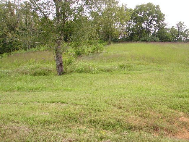 16 LOT #16 Rivercrest Lane Castalian Springs, TN 37031