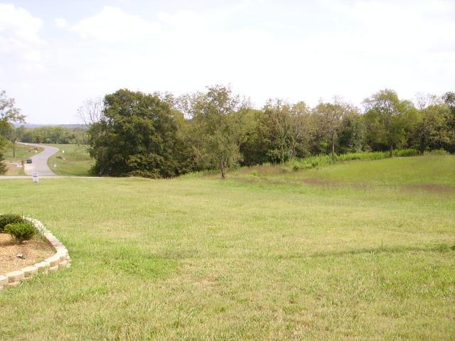 17 LOT #17 Rivercrest Lane Castalian Springs, TN 37031
