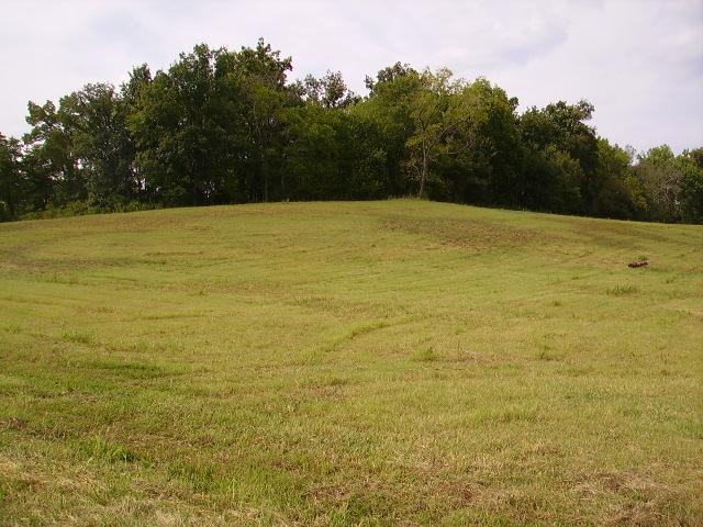 5 LOT #5 Rivercrest Lane Castalian Springs, TN 37031
