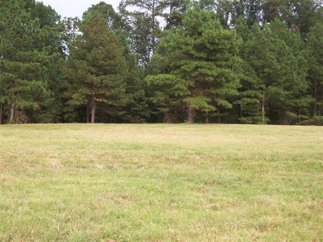 Primm Springs Rd, Lyles, TN 37098