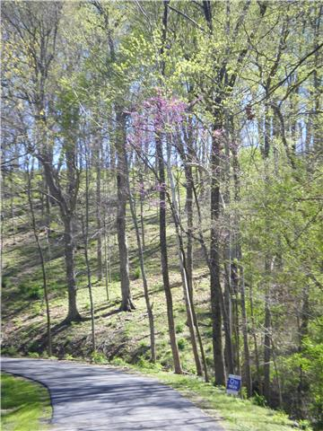 Image of Acreage for Sale near Nashville, Tennessee, in Davidson county: 17.79 acres
