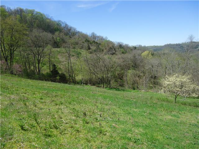 Image of Acreage for Sale near Lancaster, Tennessee, in Smith county: 19.11 acres