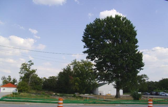 756 N Main St, Shelbyville, TN 37160