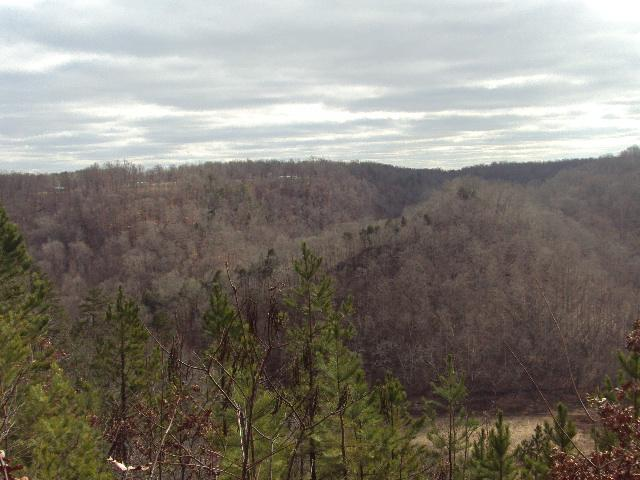 Image of Acreage for Sale near Smithville, Tennessee, in DeKalb county: 2.50 acres