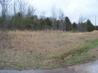 Image of Acreage for Sale near Smithville, Tennessee, in DeKalb county: 72.50 acres