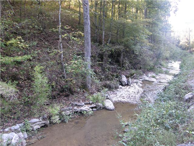 Image of Acreage for Sale near Auburntown, Tennessee, in Cannon county: 29.56 acres