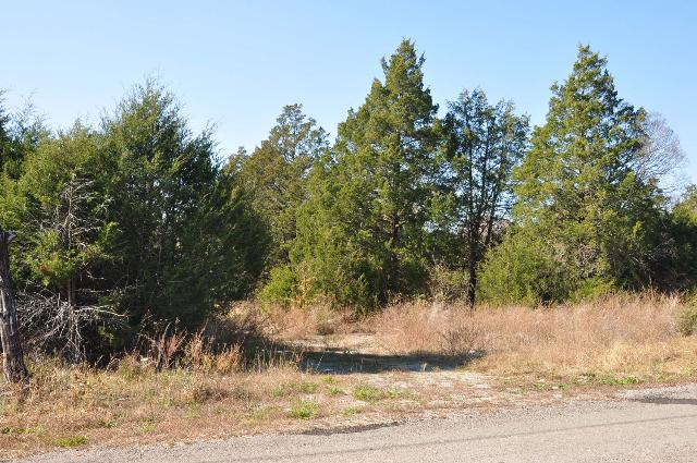 Image of Acreage for Sale near Lebanon, Tennessee, in Wilson county: 81.15 acres