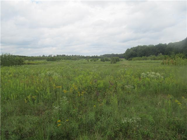 Image of Acreage for Sale near Smithville, Tennessee, in DeKalb county: 72.00 acres
