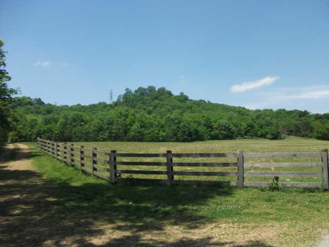 Image of Acreage for Sale near Belfast, Tennessee, in Marshall county: 66.00 acres