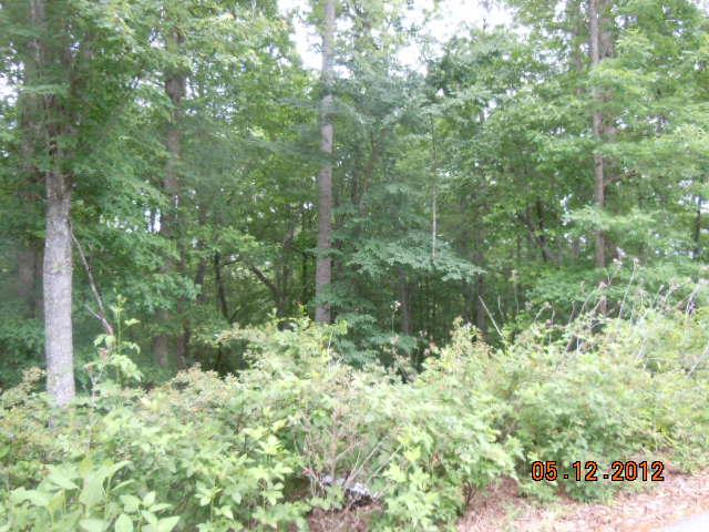 Image of Acreage for Sale near Sparta, Tennessee, in White county: 2.61 acres