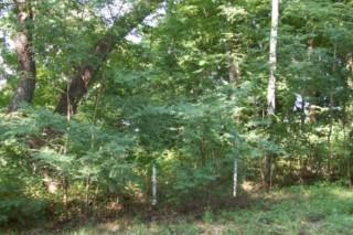 Land for Sale, ListingId:20283931, location: 3132 Hill Crest Dr. Smithville 37166