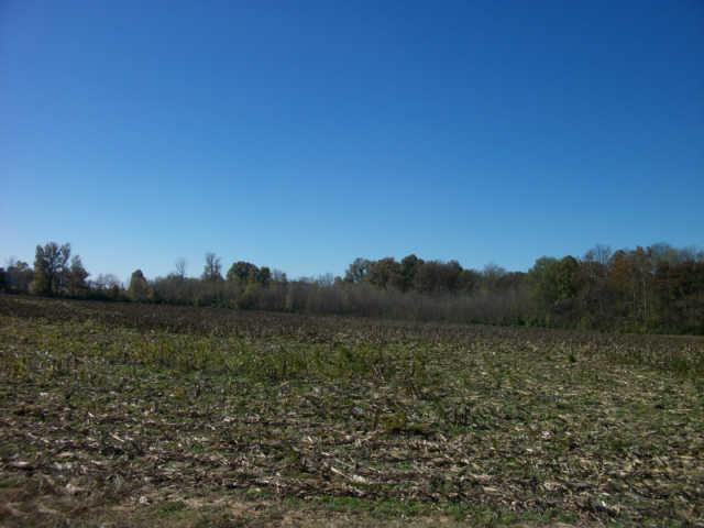 Image of Acreage for Sale near Springfield, Tennessee, in Robertson county: 28.00 acres
