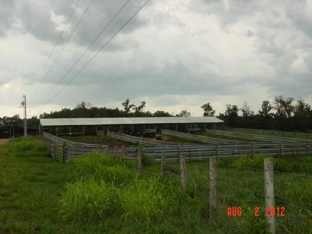 Image of Acreage for Sale near Lawrenceburg, Tennessee, in Lawrence county: 83.73 acres