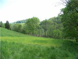 Image of Acreage for Sale near Woodbury, Tennessee, in Cannon county: 95.00 acres