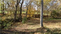 Image of Acreage for Sale near Greenbrier, Tennessee, in Robertson county: 5.38 acres