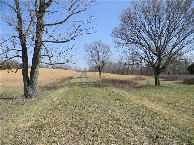Image of Acreage for Sale near Ashland City, Tennessee, in Cheatham county: 18.52 acres