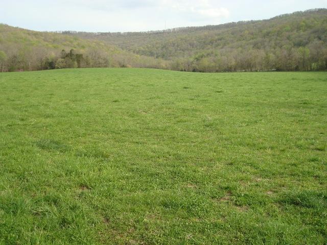 Real Estate for Sale, ListingId: 32220439, McMinnville,TN37110