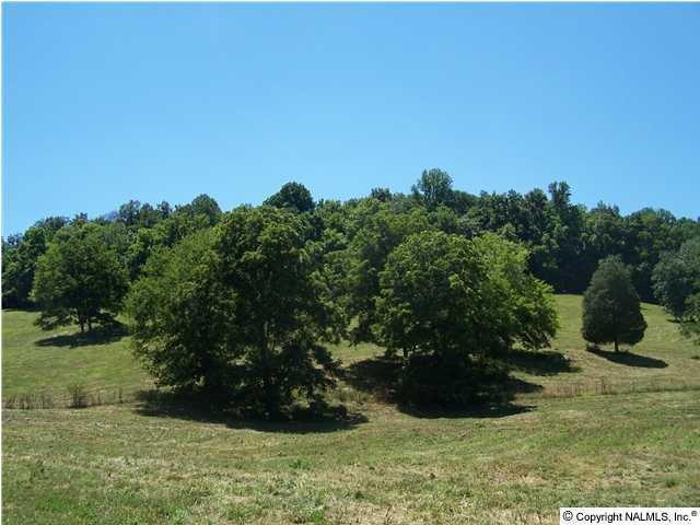 5825 Beech Hill Rd, Pulaski, TN 38478