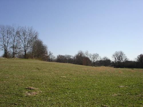 Image of Acreage for Sale near Leoma, Tennessee, in Lawrence county: 20.00 acres