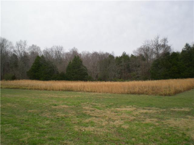Image of Acreage for Sale near Ashland City, Tennessee, in Cheatham county: 32.99 acres