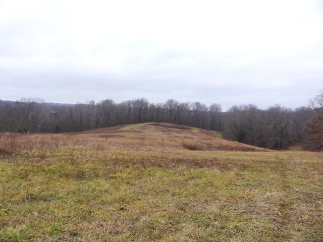 Image of Acreage for Sale near Palmyra, Tennessee, in Montgomery county: 81.29 acres