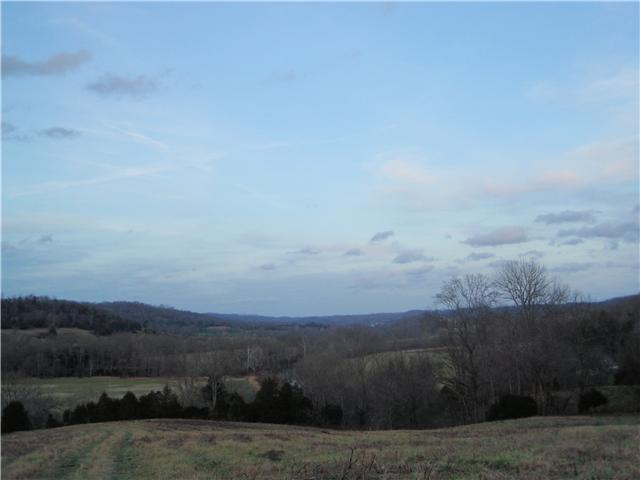 Image of Acreage for Sale near Liberty, Tennessee, in DeKalb county: 68.90 acres