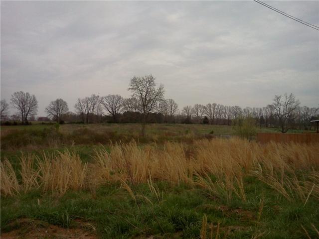 14 Saddleford Dr, Fayetteville, TN 37334