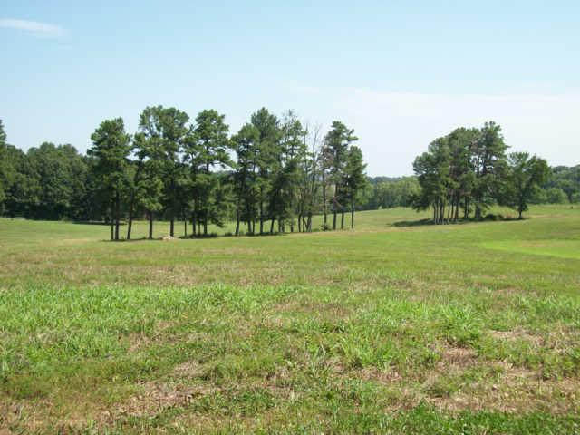 Image of Acreage for Sale near Springfield, Tennessee, in Robertson county: 30.00 acres