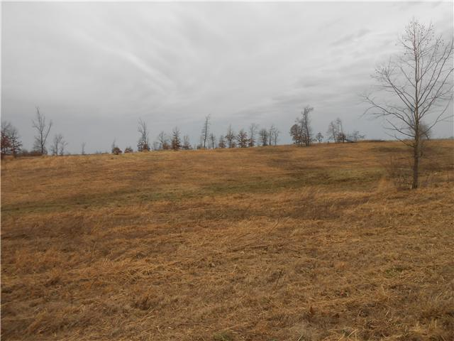 Image of Acreage for Sale near Summertown, Tennessee, in Lawrence county: 84.55 acres