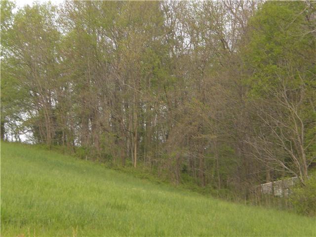 1201 Glover Hills Dr, Springfield, TN 37172