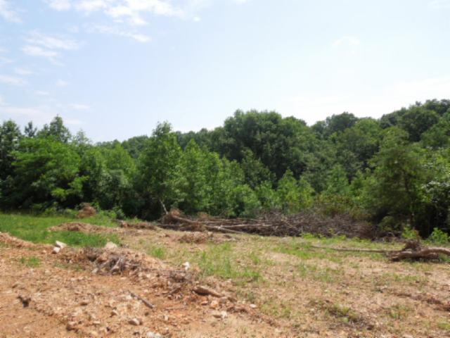 Real Estate for Sale, ListingId: 32216264, Gainesboro,TN38562