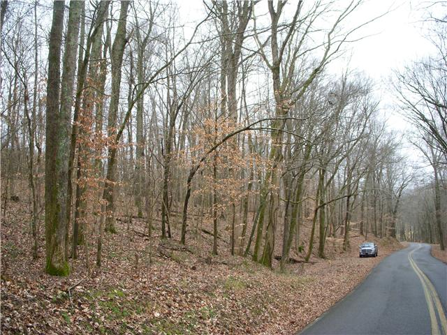 42.05 acres in Palmyra, Tennessee