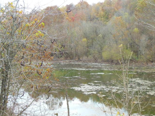 43.41 acres in Palmyra, Tennessee