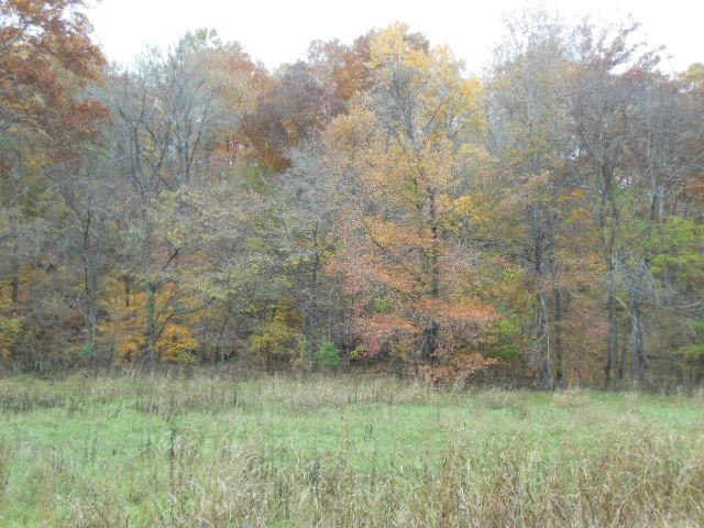 36.45 acres in Palmyra, Tennessee