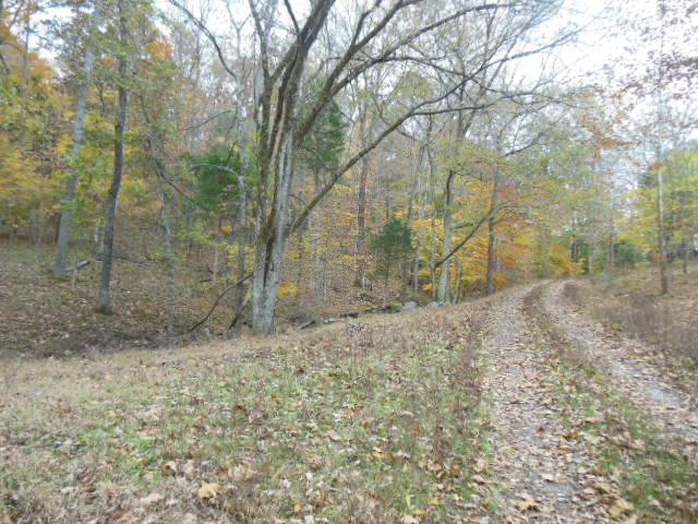 44.65 acres in Palmyra, Tennessee