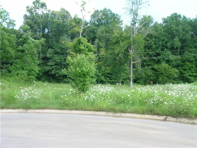 819 Cottonwood Ct, Springfield, TN 37172