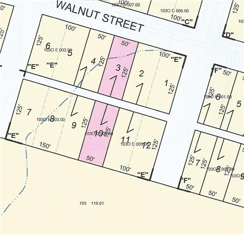 0 West Walnut Street Dickson, TN 37055