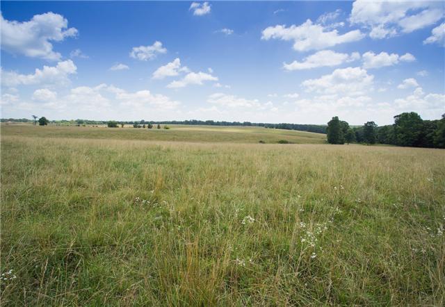 Real Estate for Sale, ListingId: 32225790, Hohenwald,TN38462