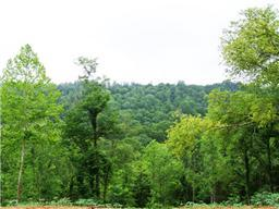 Ross Warren Parks Hollow Rd, Petersburg, TN 37144