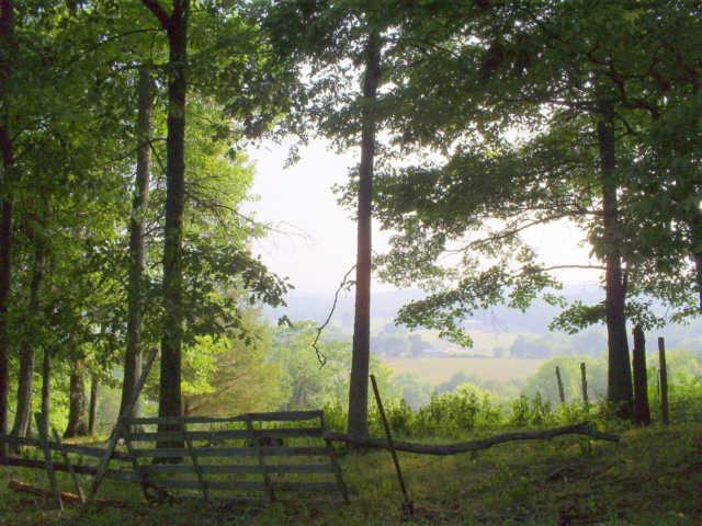 Booker Farm Rd, Hampshire, TN 38461