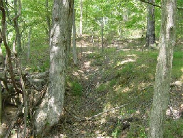 2209 Rieves Bend Rd Tract # 4, Columbia, TN 38401